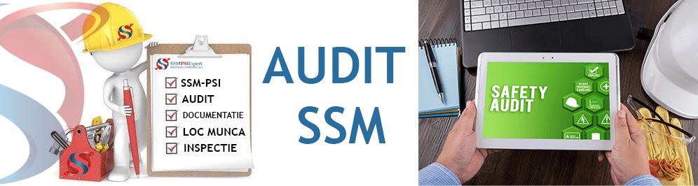 Audit SSM - SSMPSI.Expert