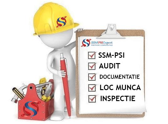 Servicii de audit SSM